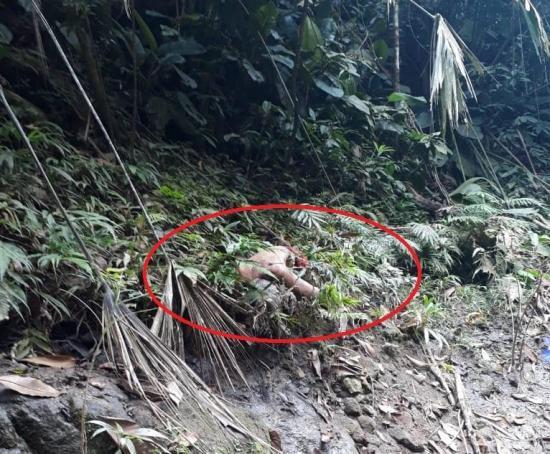 Un cadáver aparece  cerca al río
