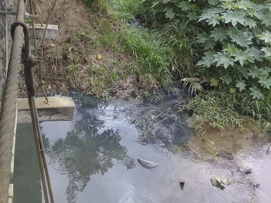 Aguas negras caen al río