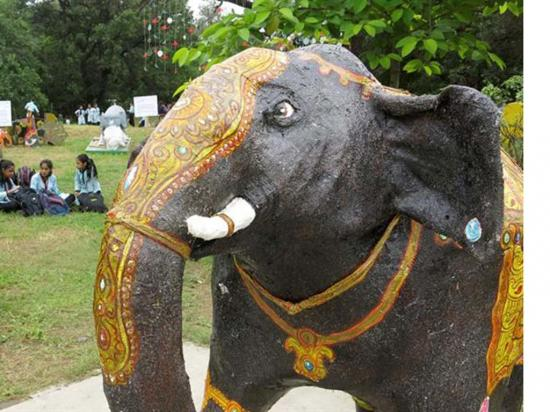Elefante asiático recibe  homenajes y piden protección