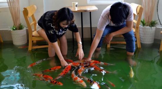 La cafetería inundada donde los peces nadan entre las mesas