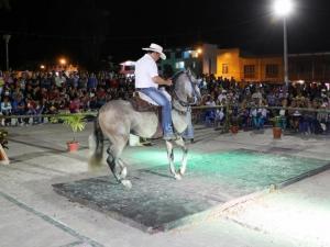 Disfrutan concurso de caballo parqueado