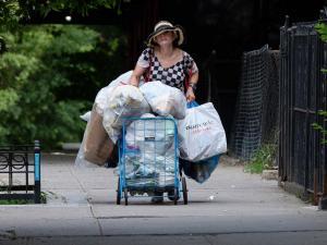 Millonaria gana $ 20 recogiendo latas en  las calles