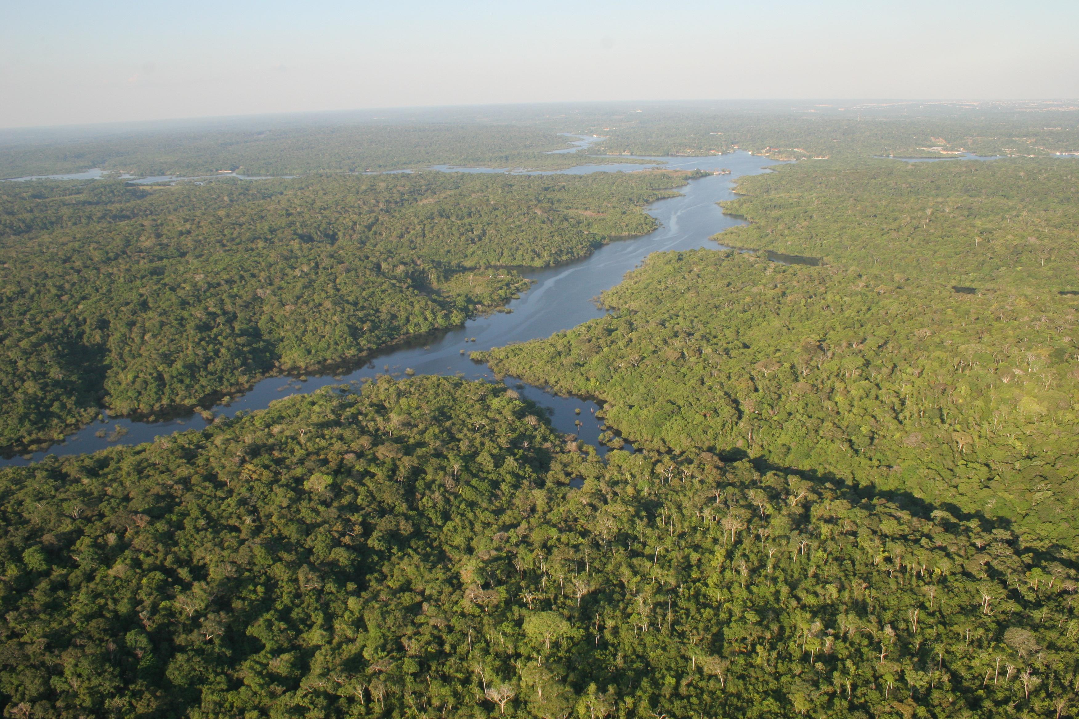 Descubren un ''cementerio'' indígena con 500 años en el corazón de la Amazonía brasileña