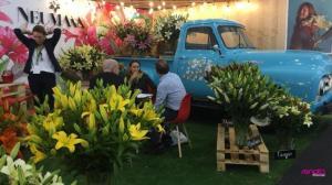 La Feria ''Expoflor 2018'' en Quito congrega a 115 expositores
