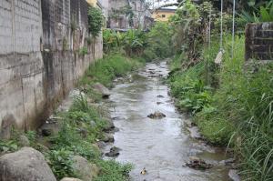 Al rescate de doce ríos