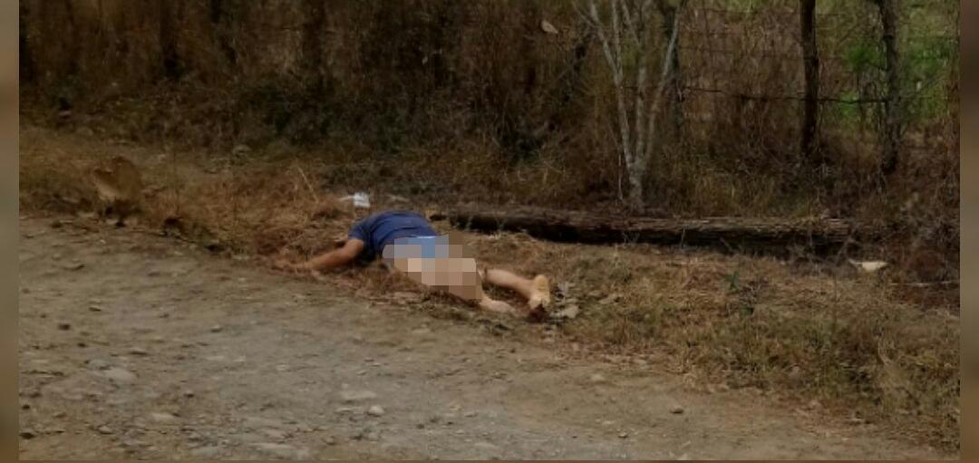 Cadáver a un lado de la vía