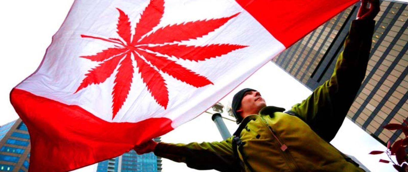 Gobierno canadiense dice que está listo para la legalización de la marihuana