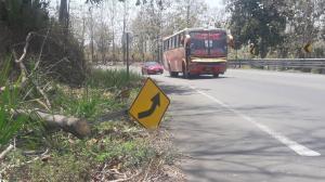 Penan en la carretera