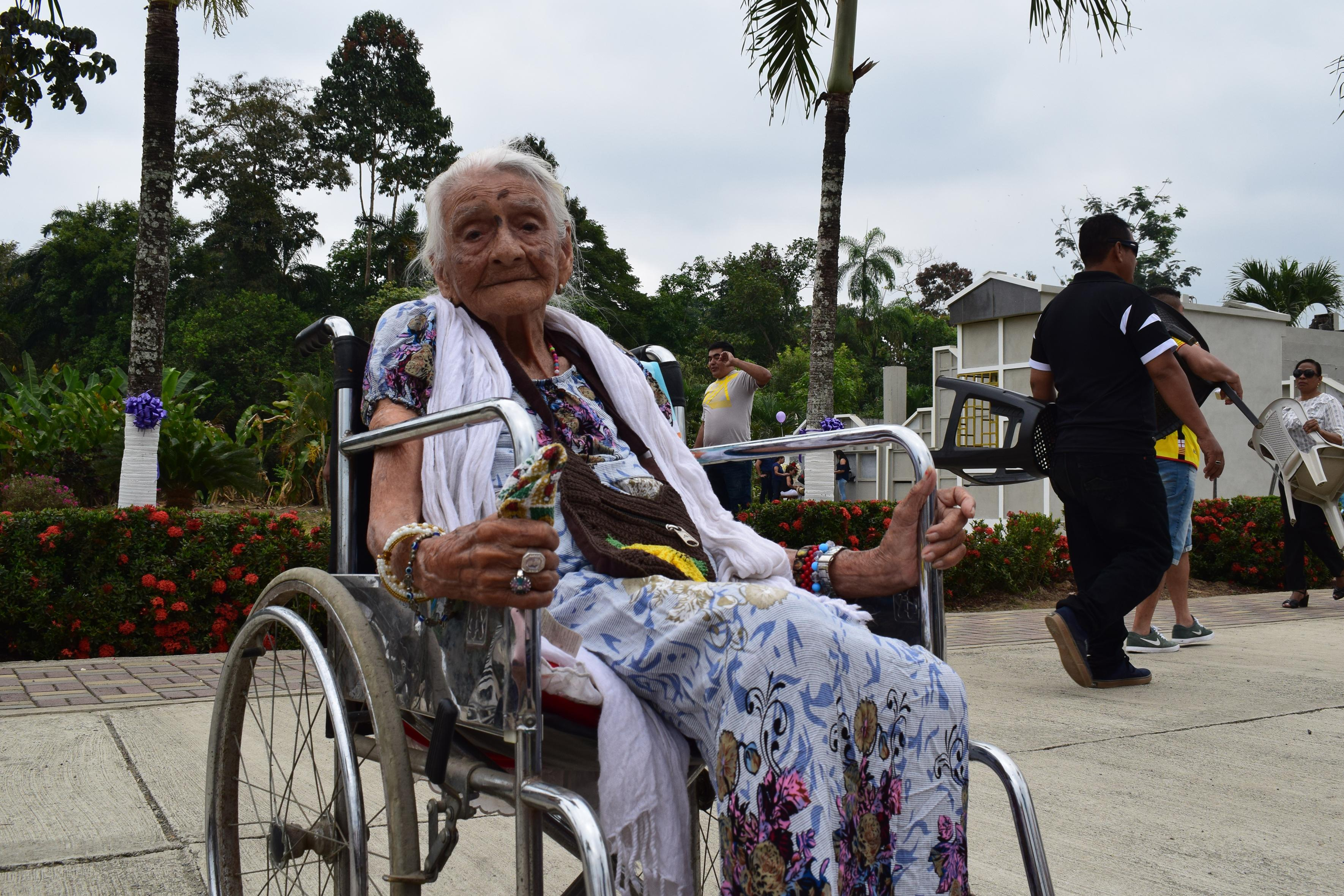 Julia centenaria