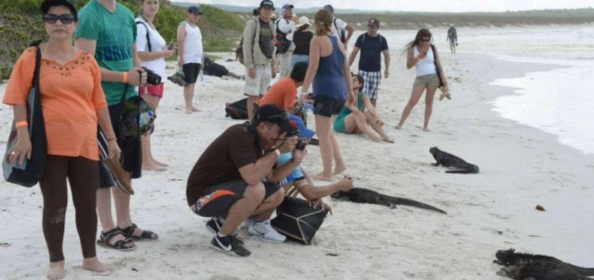 El turismo hizo crecer en exceso la población en las Galápagos, según experto