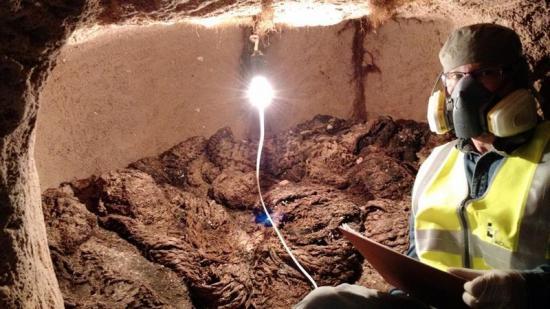 Hallan cerca de La Paz más de cien fardos funerarios de alrededor del 1100
