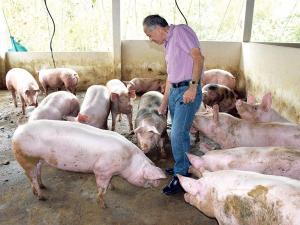 Tony venderá carne sellada al vacío