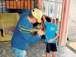 7 años de cárcel por maltrato a menores