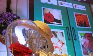 Ecuador promociona en la India la semilla 'tagua' con un desfile de moda