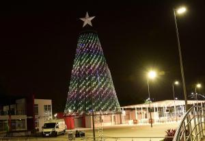 Se encendió el nuevo árbol de El Diario en medio de un show musical