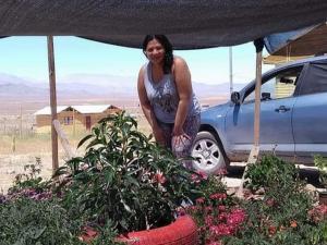 Manabitas crearon un edén en el desierto de Chile