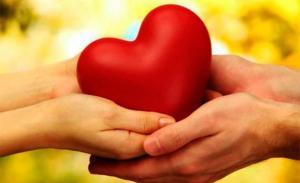 ¿Qué es el amor?, una ''materia'' de la Universidad de Stanford