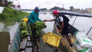 La cosecha sale en canoa