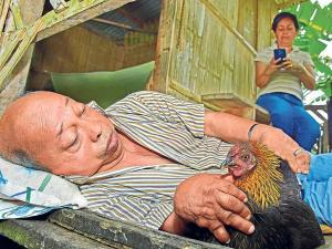 A don Rufino solo le quedó su gallina
