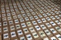 Decomisa cerca de 800 kilos de cocaína en el recinto La Cadena, Quevedo