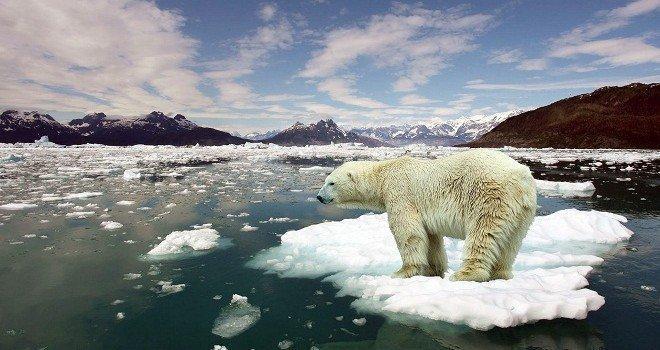 Científicos alertan que el cambio climático es más grave de lo que se cree
