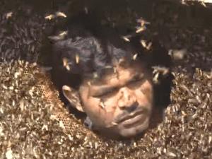 Llena su boca de abejas