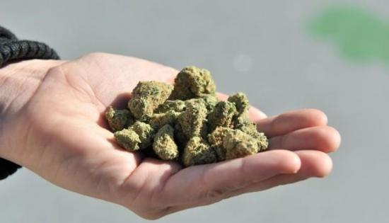 En Ecuador se incauta 644.000 dosis de marihuana que pretendían llegar a Perú