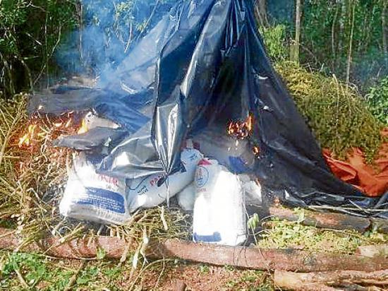 Queman campamentos usados por los narcos
