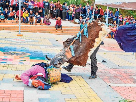 'Vacas locas' y bandas en San Lucas