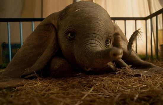 El ''Dumbo'' de Tim Burton amplia la historia original con conflictos humanos