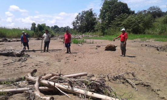 Agricultores de Paján lamentan pérdidas de sus cultivos de arroz y maíz
