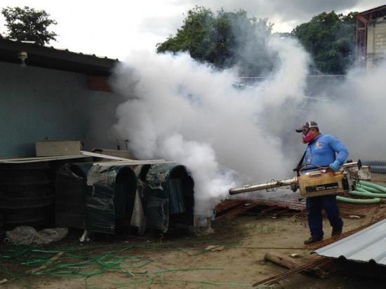 Reportan ocho casos de dengue en tres cantones de Manabí