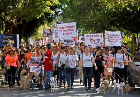 Gobierno cubano autoriza la primera marcha ciudadana en décadas
