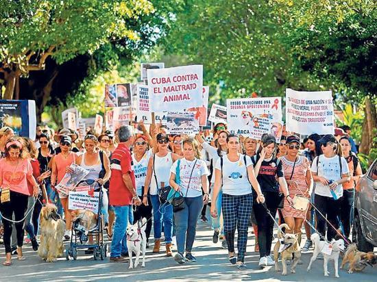 Marchan por los animales
