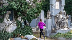 Viena debate si correr en el cementerio altera la paz de los difuntos