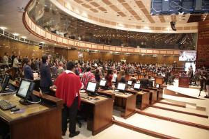 Asamblea no destituye a su presidenta Elizabeth Cabezas