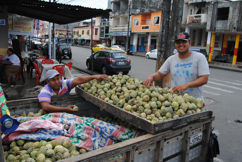 La chirimoya está barata en Babahoyo