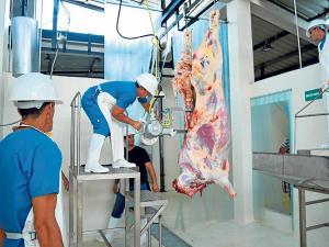 Camal de Santa Ana envía carne a Portoviejo
