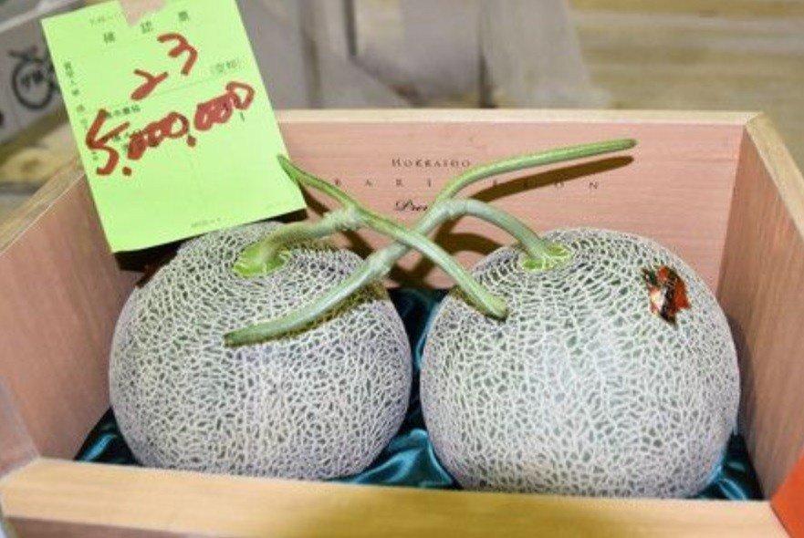 Subastados por un precio récord de 45 mil dólares dos melones en Japón
