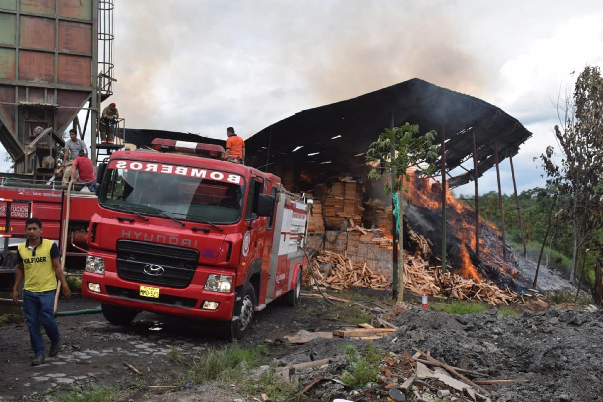 Incendio consume troncos
