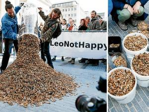 Recogen 270.000  colillas de cigarros en  3 horas