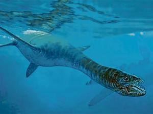 Restos de vida marina más antigua