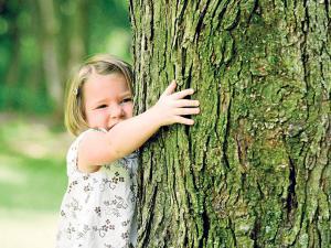No pierdas tiempo: abraza un árbol y siéntete bien