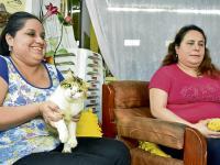 Con artesanías ayudan a mascotas