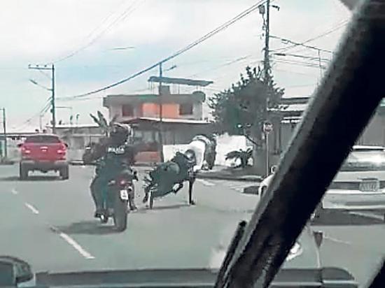 Un caballo  desenfrenado tumbó a mujer