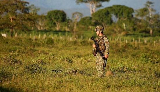 Al menos cinco militares colombianos mueren en emboscada en suroeste del país