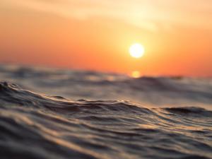 Arrestan en EEUU a hombre que tiró al océano desde muelle a su hijo de 5 años