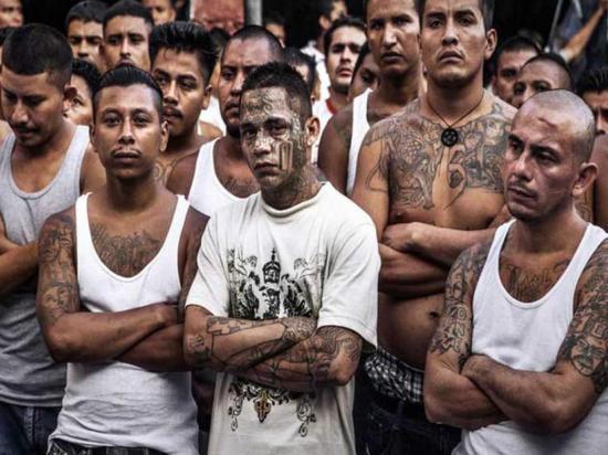 5,3 millones se donan contra las pandillas