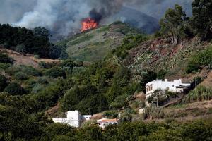 Gran incendio forestal quema 1.500 hectáreas y deja 4.000 evacuados en Canarias