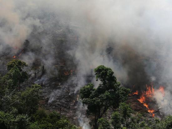 Ecuador ofrece  ayuda ante incendios